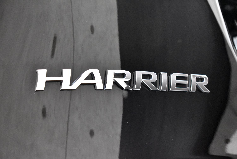 ハリアー10
